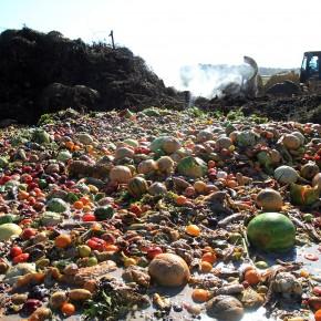 Guia visual sobre o desperdício de alimentos