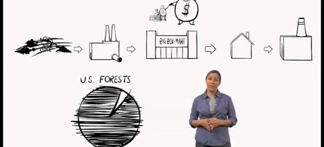 4 recursos visuais que ajudam a entender o que é meio ambiente