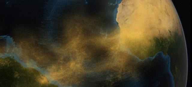 Vídeo mostra poeira do Saara fertilizando Floresta Amazônica